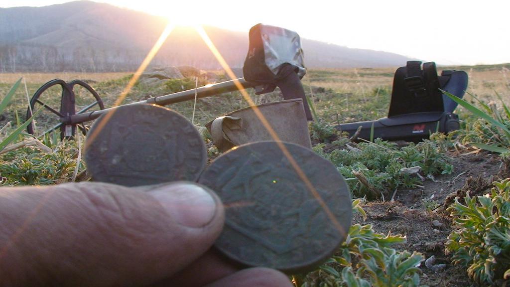 Как выбрать металлоискатель для поиска монет федорин купить