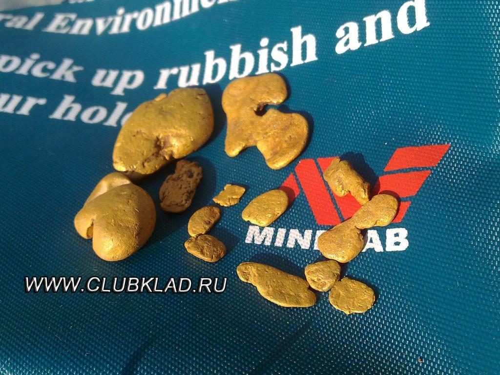 Золотые самородки найденные металлоискателем Minelab