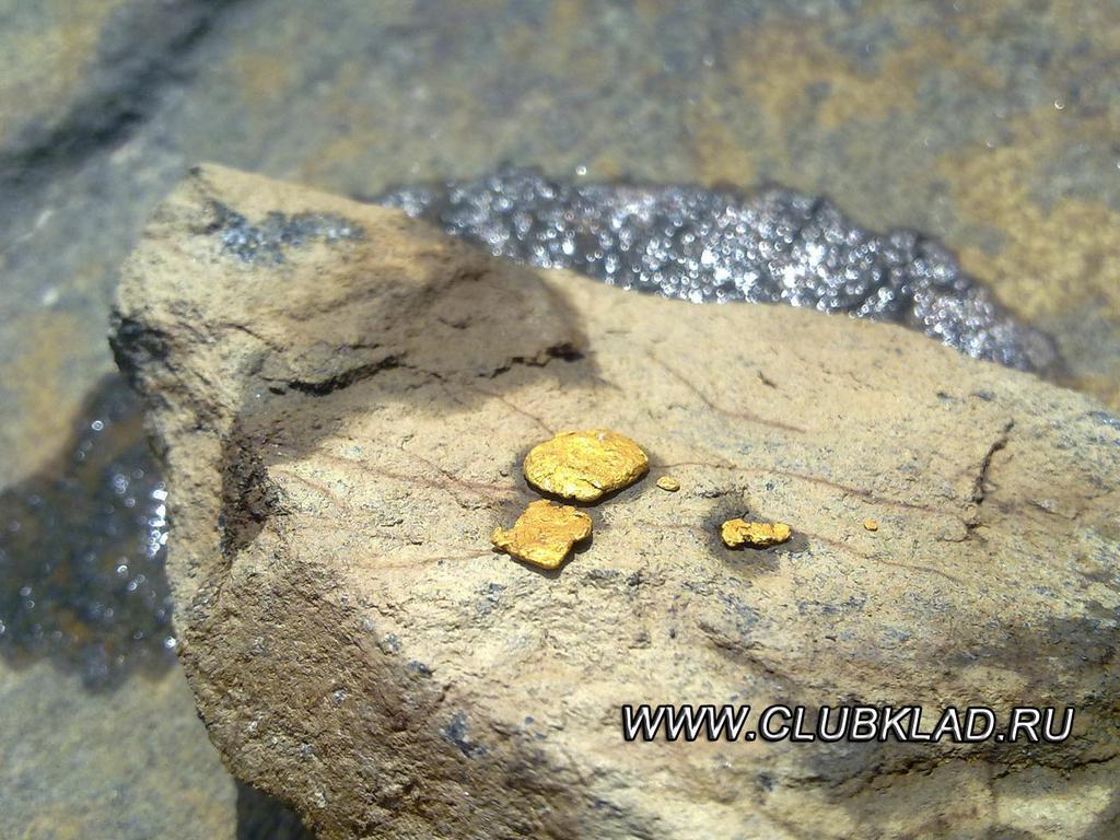 Золотые самородки реки каверга.