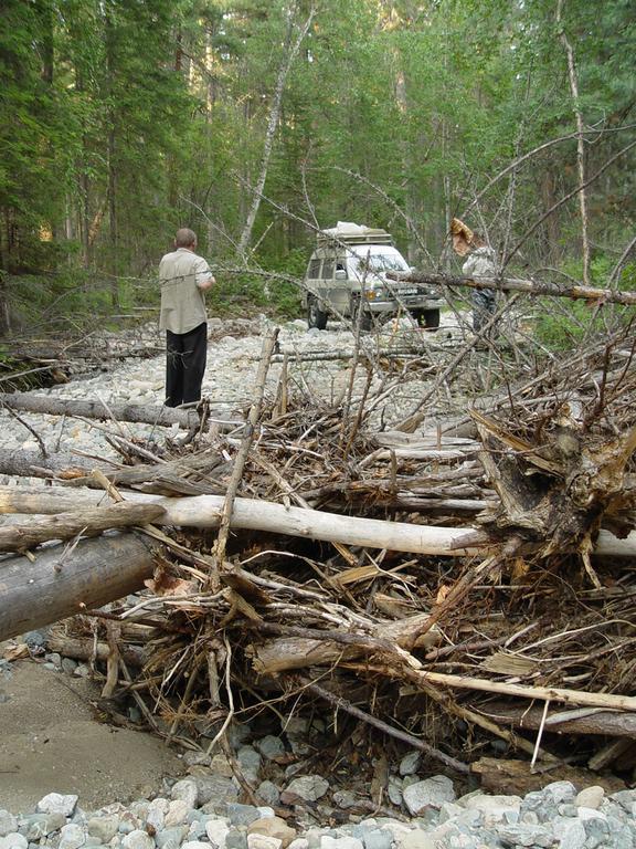 Дорогу перегораживали деревья, упавшие при весеннем паводке