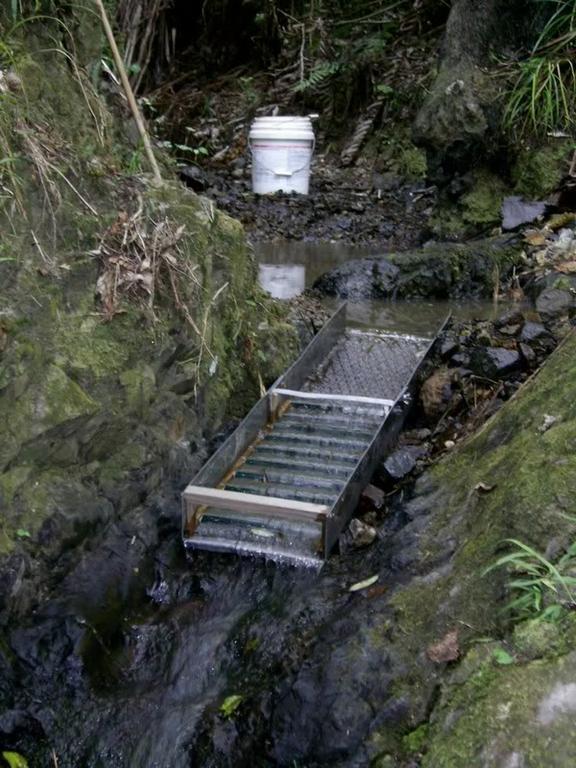 проходнушка Новая Зеландия легкая и удобная бросил в ручей и кидай породу на нее
