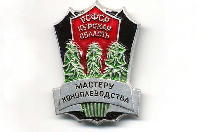 """Батальон """"Киев-2"""" обнаружил плантацию конопли в Славянске. Владелец выращивал наркозелье в теплице возле дома - Цензор.НЕТ 9988"""
