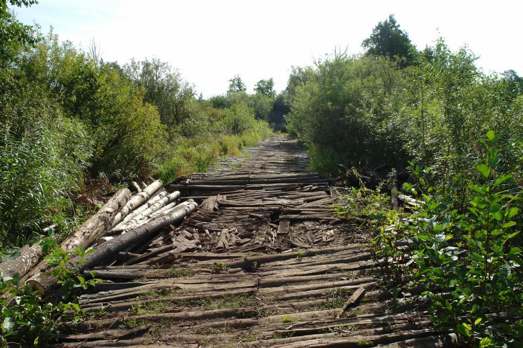 Где искать клады Старинные дороги мосты и гати девут к зпбытым поселениям