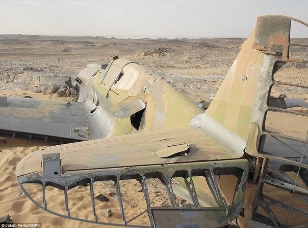 В пустыне Сахара нашли британский истребитель Р-40 Киттихоук времен Второй мировой войны.