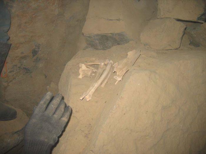 Кости найденные а пещере Горомын Агы - Пещера Горомын Агы конец января 2007 года Окинский район Бурятии